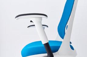 color:Adjustable armrest